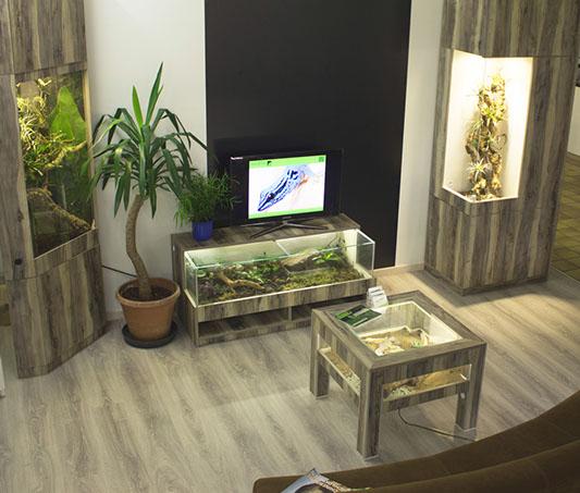 Awesome Wohnzimmermöbel Selber Bauen Ideas - Globexusa.us ...