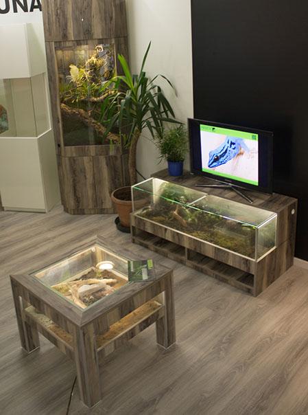 Habitat Terrarien Galerie